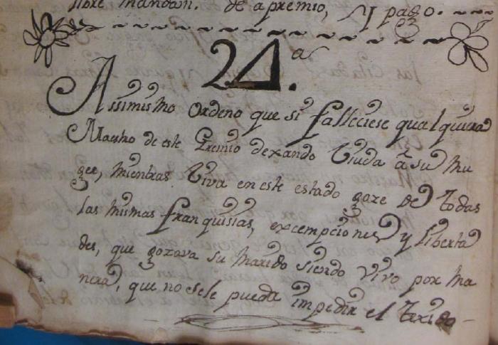 Articulo 24 copia